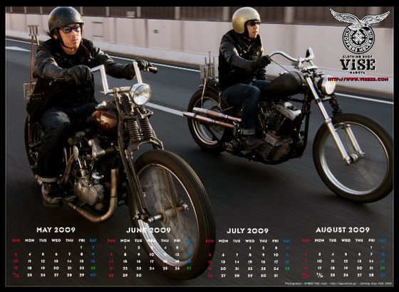 ViSE New calendar